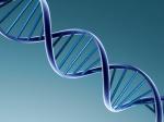 DNA Ancestry Testing in the Media