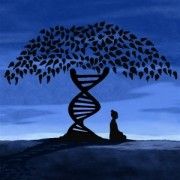 67-quotes-for-genetic-genealogists-300x300