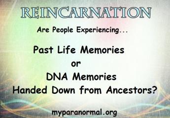 dna-memories-reincarnation