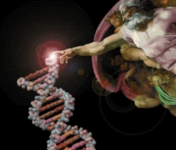 dna-spark-of-life