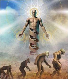 evolved-dna