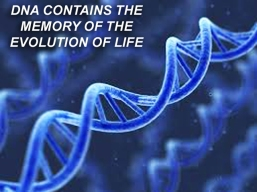 x-dna-contains-memory